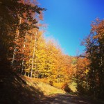 fall autumn in the mountains szczyrk hiking perfectweather beautifulday polonizationhellip