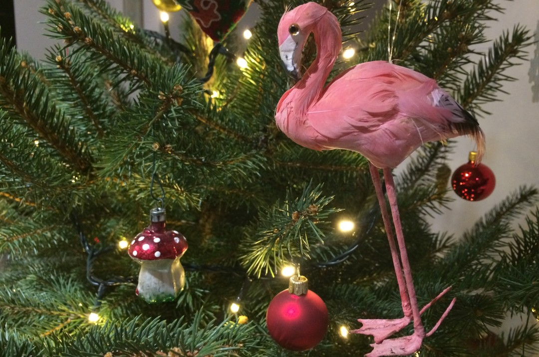 polonization_flamingo