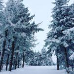 stillwinterhere poland polonization szczyrk beskidy mountains winterwalk winter snow